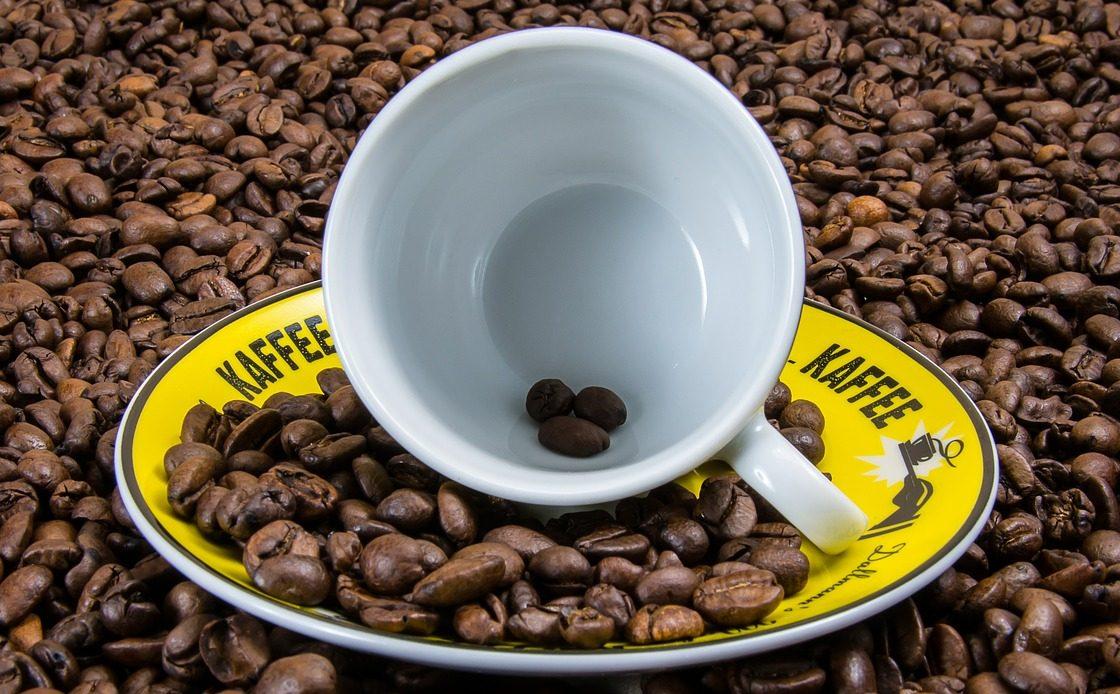 捨てないで!コーヒー粉の驚きのリサイクル法