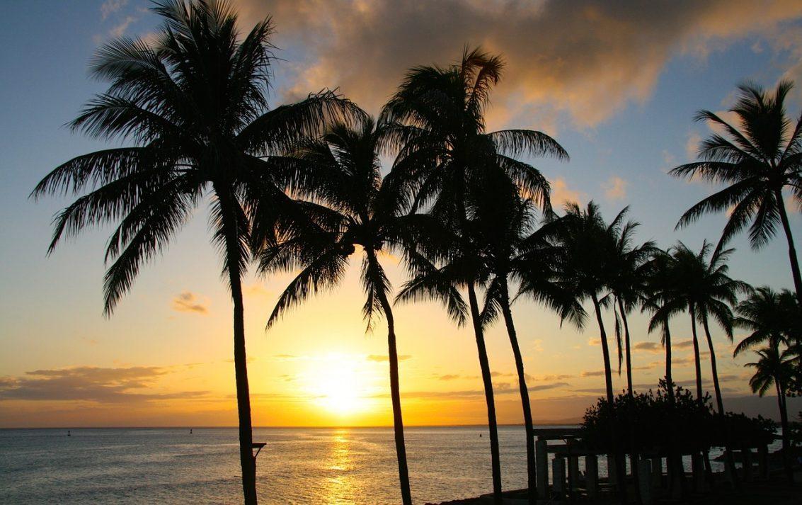 【ハワイアンミュージック】ハワイなのにレゲエ?アイランド・レゲエという音楽