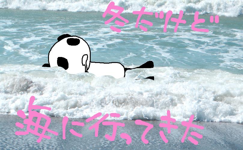 冬の海もたのしいよ